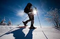 Edmonton Snowshoeing